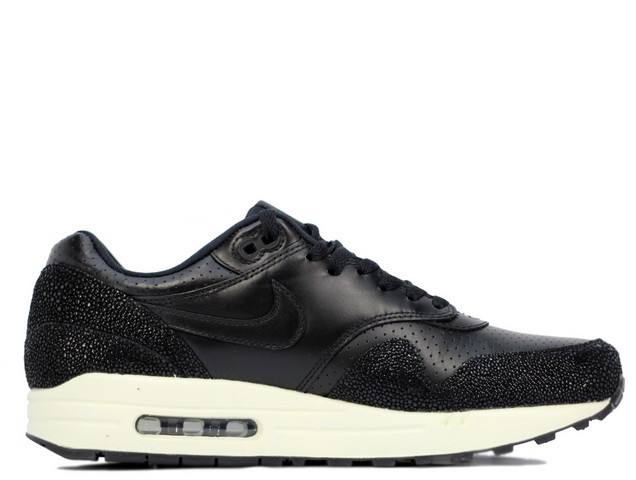 AIR MAX 1 LEATHER PAの商品画像-3