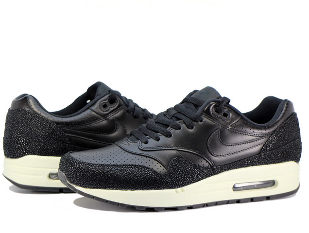 AIR MAX 1 LEATHER PAの商品画像-1