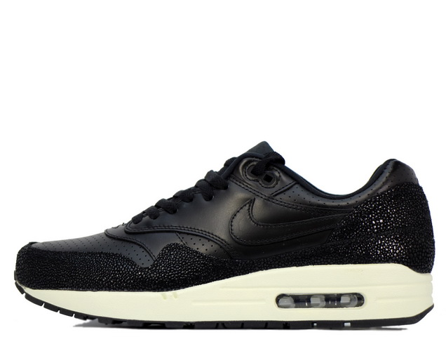 AIR MAX 1 LEATHER PAの商品画像
