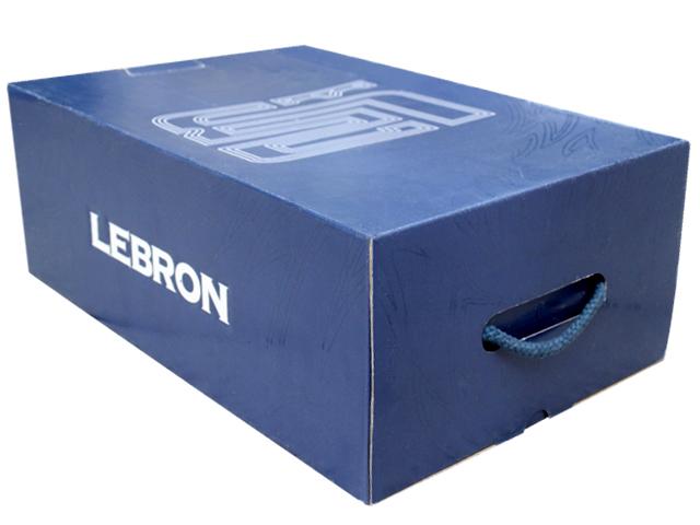 LEBRON 2 PEの商品画像-7