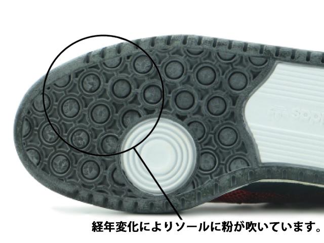sole_sample07